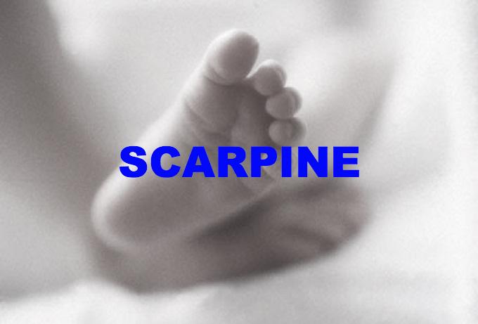 LE SCARPINE